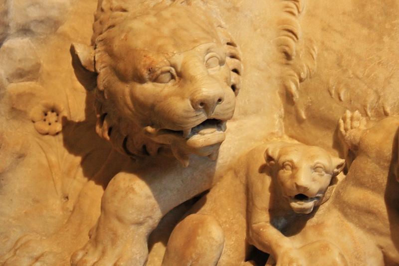 Löwenmutter1