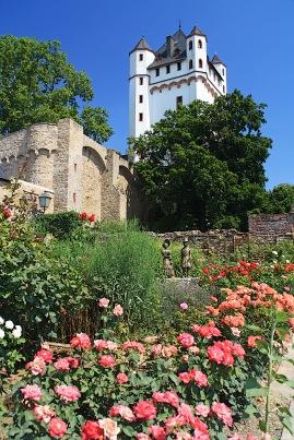 Montrichardplatz und Burg