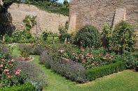 Rosengarten der Burg