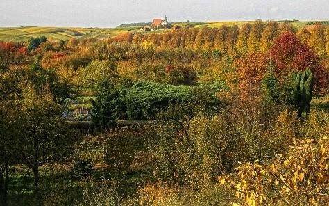 Herbstlook