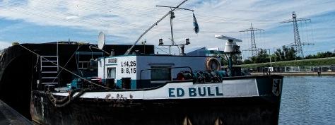 Ed Bull
