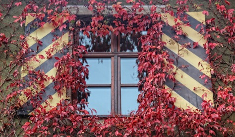 Herbstfenster