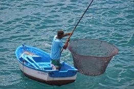 Fischfang3