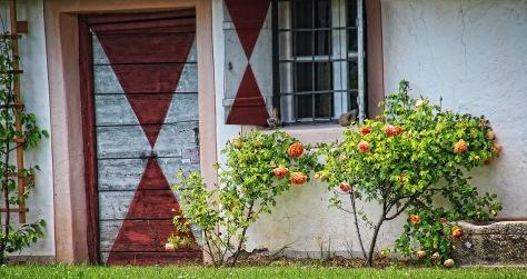 Rosen Fenster