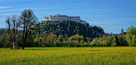 Festungsberg