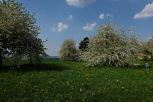 Kirschgärten 1 3